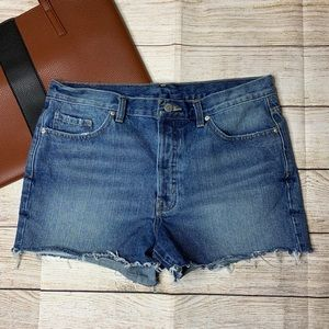 BDG low rise boyfriend cutoff shorts size 28